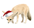 Fennec Fox ##STADE## - coat 117