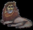 Lion ##STADE## - coat 1000000035